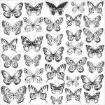 """Ацетатный лист """"Romantique Acetate — Butterflies"""" 30,5x30,5 см., Kaisercraft, BU001833"""