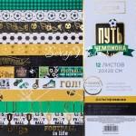 Набор бумаги односторонней с фольгированием Путь чемпиона, 10 листов + ацетатных листа, размер 20х20 см, 250 г/м, АртУзор, BU001953