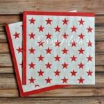 Салфетка бумажная 3-х слойная, звезды красные, размер 33х33 см., цена за 1 шт. DK000027