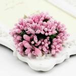 Ягоды с Тычинками и с листиками, цвет: Розовые, цена за 1 веточку, LI000051