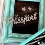Надпись из термотрансфера Passport732, пленка зеркальное серебро, размер общий 7х1,8 см., TN000732