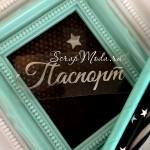 Надпись из термотрансфера Паспорт+звёздочка, пленка зеркальное серебро, размер общий 6,5 см., TN000733