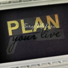 Надпись из термотрансфера Plan your live, пленка зеркальное золото и чёрная, размер общий 10х5,5 см., TN000804