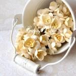 Цветы Вишни сливочные с тычинками, 25 мм., 5 шт., UC000173