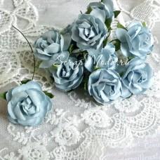 Роза кудрявая Baby Boy, 30 мм, цена за 1 шт., UC002508