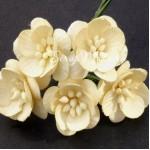 Цветы Вишни Ivory с тычинками, 25 мм., 5 шт., UC002559