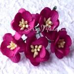 Цветы Вишни фуксия с тычинками, размер:25 мм., 5 шт., UC002562