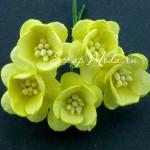 Цветы Вишни лимонные с тычинками, 25 мм., 5 шт., UC002563