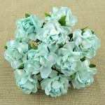 Роза Cottage тиффани,  25 мм, цена за 1 шт., UC002574