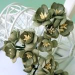 Цветы Вишни хаки с тычинками, 25 мм., 5 шт., UC002864