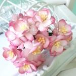 Цветы Вишни бело-розовые с тычинками, 25 мм., 5 шт., UC002865