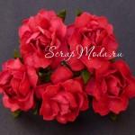Роза Cottage Красная,  30 мм, цена за 1 шт., UC002879