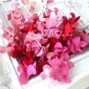 Гардения, MIX розово-малиновые, 32 мм, 10 шт, UC002886