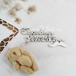 Чипборд Надпись с усами: Сокровища маленького джентльмена, 7х3 см, Чип и Скрап. VT001155